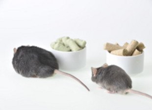 Comparison of volatile organic compounds in diet-induced and mono-genetic obese mice.